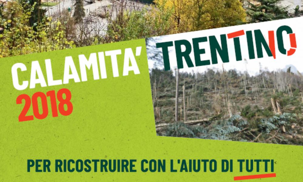 Solidarietà calamità Trentino 2018
